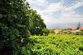Quinta das Vinhas ^ Cottages, Estreito da Calheta, Madeira, Portugal, 27 June 2011 - Main house area - panoramio (10).jpg