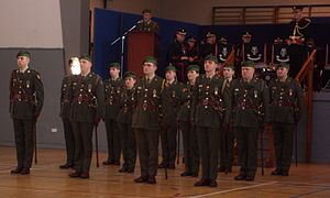 Army Reserve (Ireland) - Officers of the Army Reserve in formal dress uniform