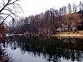 Raabs an der Thaya, Österreich, Flussufer 280318.jpg