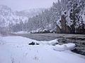 Rafting the Smith River (14038782460).jpg