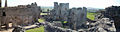Raglan Castle Panorama.jpg