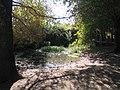 Ramat-ha-Nadiv-spring-trail-1954.jpg