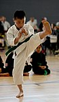 Ramstein holds youth martial arts tournament 150228-F-EN010-064.jpg