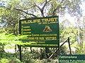 Randenigala,Rantembe Sri Lanka - panoramio.jpg