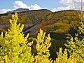 Rd550 Durango to Silverton - panoramio - Frans-Banja Mulder (1).jpg
