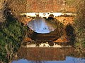 Reflected Bridge - geograph.org.uk - 1072604.jpg