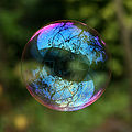 Reflection in a soap bubble edit cropped.jpg
