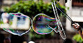 Reflections in soap bubbles - Réflexions dans bulles de savon - Image Picture Photography (14435337281).jpg