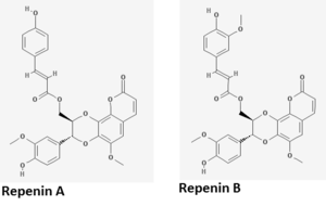 Repenin - Repenin A and B.