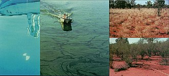 Ecological resilience - Image: Resilience 1