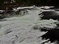 Rhine Falls, Zurich (Ank Kumar) 11.jpg