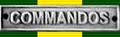 Ribbon - Closure Commemoration Medal & Clasp.png