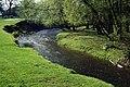 River Bollin, nr. Prestbury - geograph.org.uk - 163700.jpg