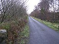 Road at Derrylahan - geograph.org.uk - 1089627.jpg