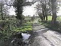 Road at Toberlane - geograph.org.uk - 270758.jpg