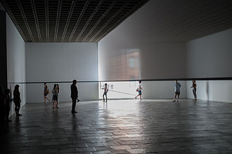 Robert Irwin (artist) - Image: Robert Irwin Scrim Veil Black Rectangle Natural Light Whitney 2013