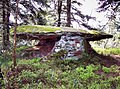 Rocher du dolmen. (1).jpg