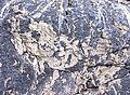 Rock formation 4.jpg