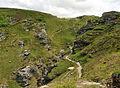 Rocky Valley, Tintagel (4959).jpg