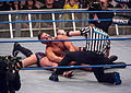 Roode crossface Aries.jpg