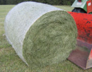 Round bales are harder to handle than square bales but compress the hay more tightly. This round bale is partially wrapped to keep out moisture