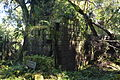 Ruinas Santa Maria Talleres 04.jpg