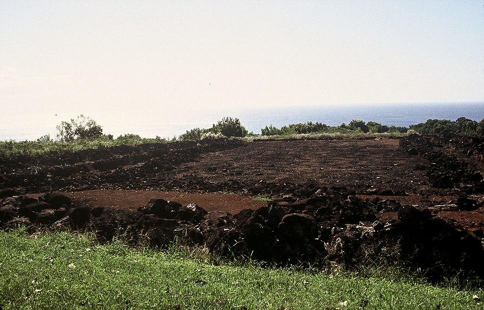 Ruins of mahuka heiau
