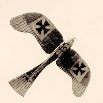 Aerial reconnaissance in World War I - A German observation plane (Rumpler Taube) flies over. Nat. Geog. Jan.18