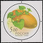 Russia stamp 2003 № 883.jpg