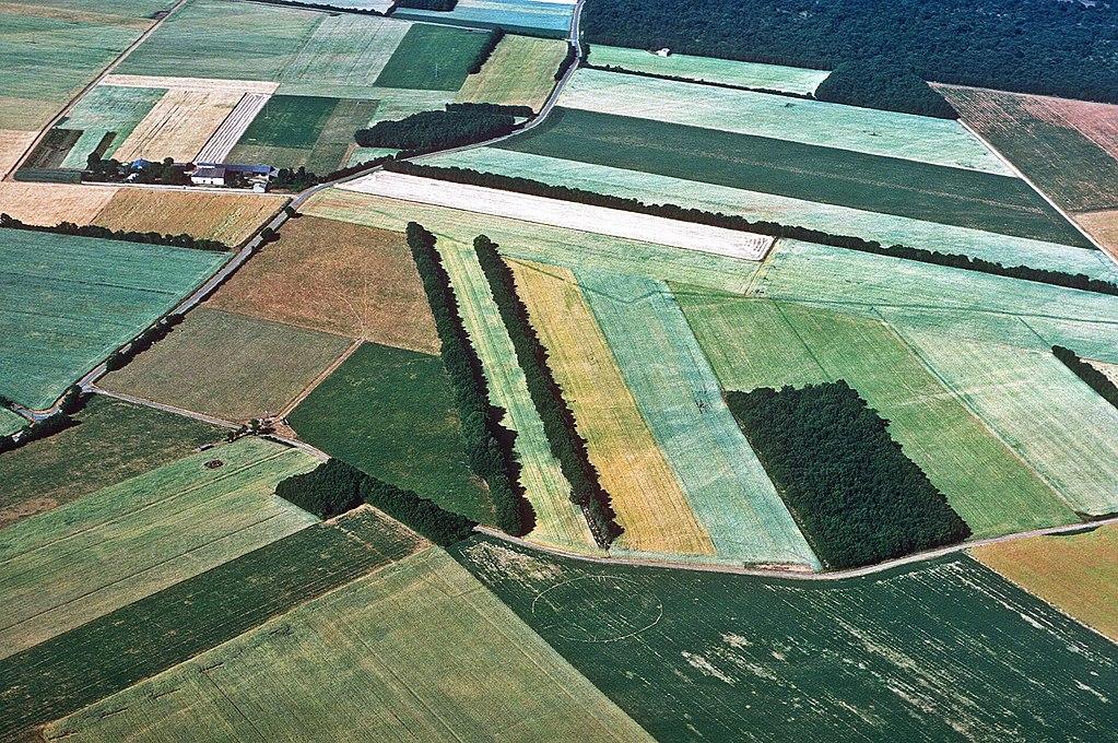 Prospection aérienne aux environs de Saint-Georges-du-Bois avec la découverte d'un amphithéâtre gallo-romain