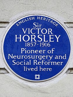 Sir victor horsley 1857 1916 pioneer of neurosurgery and social reformer lived here