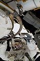 STS-133 EVA1 Alvin Drew 2.jpg