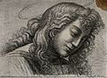 Saint John the Evangelist. Etching after Raphael. Wellcome V0032374.jpg