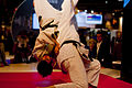 Salon de la photo 2010 Judo 01.jpg