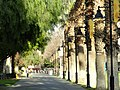 San José State University - DSC03954.JPG