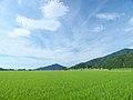 Sano, Mihama, Mikata District, Fukui Prefecture 919-1143, Japan - panoramio (2).jpg
