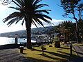 Santa Cruz, Madeira park 1.JPG