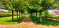 Schlosspark Königshain.jpg