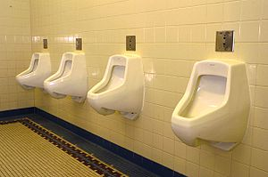 Urinal - Typical arrangement of sensor-operated urinals in a row without partitions