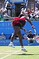 Serena Williams (5849378706).jpg