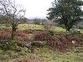 Sessiaghkeelta Townland - geograph.org.uk - 663308.jpg