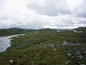 Setesdalsheiene - Image: Setesdal Vesthei