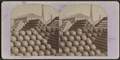 Shell pyramids, from Robert N. Dennis collection of stereoscopic views.png