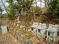Shinshushinmachi Nakamaki, Nagano, Nagano Prefecture 381-2415, Japan - panoramio (3).jpg