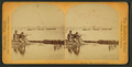 Shooting the alligators, from Robert N. Dennis collection of stereoscopic views.png