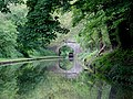 Shropshire Union Canal west of Gnosall Heath, Staffordshire - geograph.org.uk - 1388908.jpg