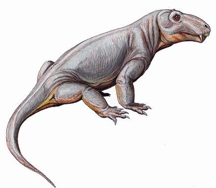 Sinophoneus
