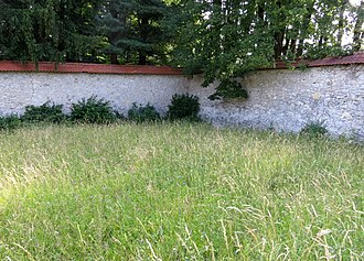 Mass graves in Škofja Loka - Image: Skofja Loka Slovenia Castle Wall 2 Mass Grave