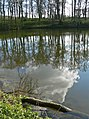 Small lake in Rolleston, Leicestershire - geograph.org.uk - 753537.jpg