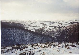 Exmoor - Horner Woods, Exmoor, in winter